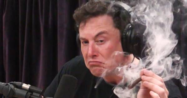 Elon Musk fuma una canna