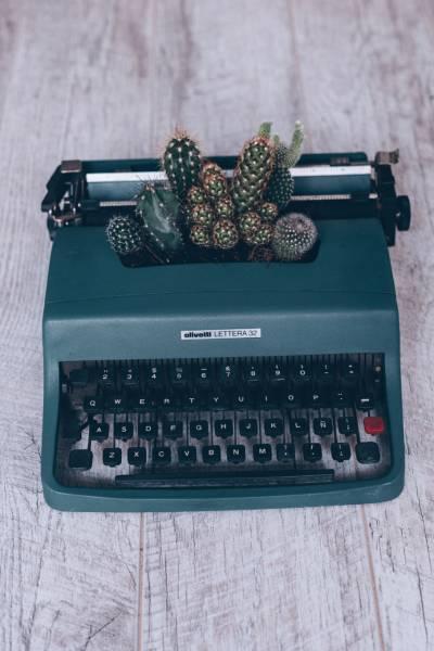 Macchina da scrivere con cactus
